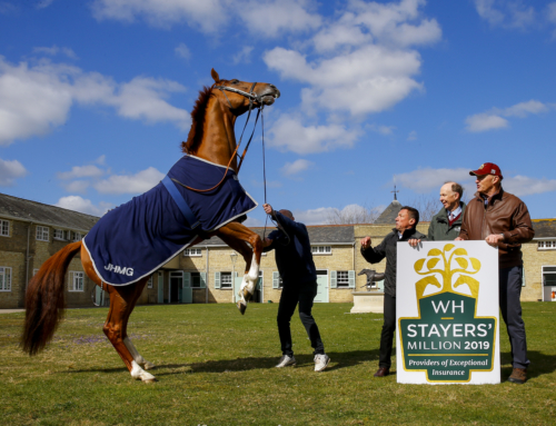 The Weatherbys Hamilton Stayers' Million